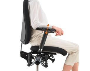 Haider Bioswing 260 iQ Bestseller  Preview Image